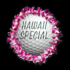 Hawaiian Vacation ($3,000 Value)