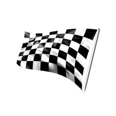 NASCAR Driving Experience ($5,000 Value)